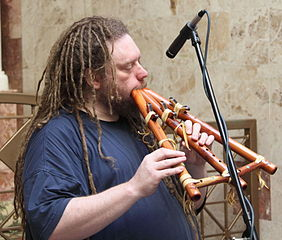 Jaron Lanier is also a musician who works with rare instruments (Image: Wikimedia Commons)